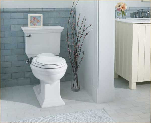 bathroom-toilet-remode